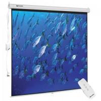 Экран проекционный настенный (180х180 см), матовый, электропривод, 1:1, BRAUBERG
