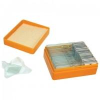 Набор готовых микропрепаратов LEVENHUK N20 NG (20 образцов, стекла), 29277
