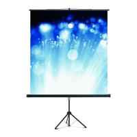 61 002 16 Экран Cineflex на штативе Magnetoplan, 2000 х 2000 мм